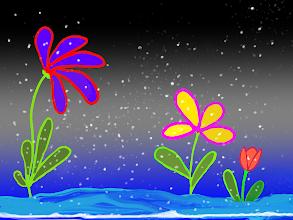 Snowy Night Blooms